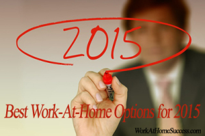 Best Work At Home Options of 2015