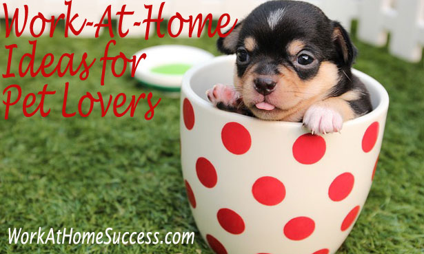 Work AT Home Ideas for Pet Lovers
