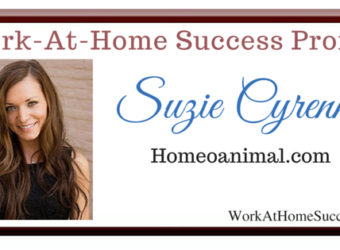 Work-At-Home Success Profile (1)